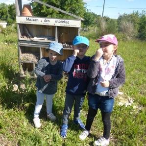 1 - Devant la maison aux insectes