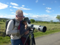 5 - observation du coucou geai