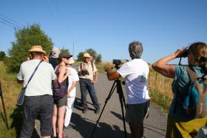 ARBRE - Sortie observer les oiseaux - 01/07/2018